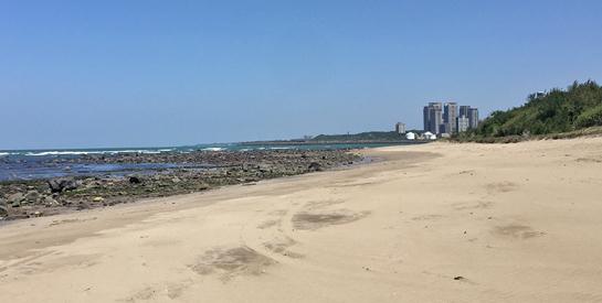 向海致敬:本署海岸環境清理維護作為